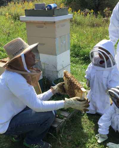 Vanessa's Bees school tours with Grand River Rafting