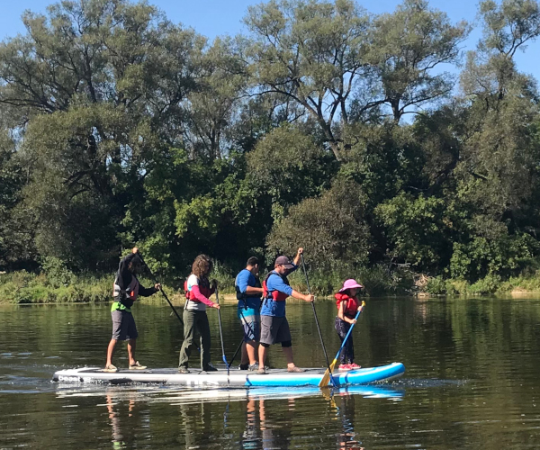 Seven person super stand up paddleboard corporate event on the Grand River
